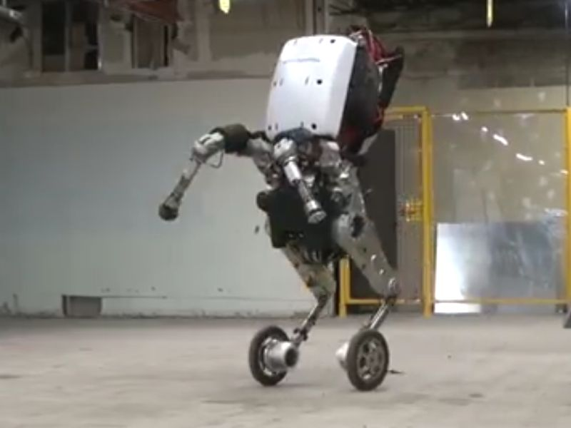 Boston Dynamics Bot